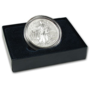 2008-W Burnished Silver American Eagle (Rev '07, w/Box & COA)