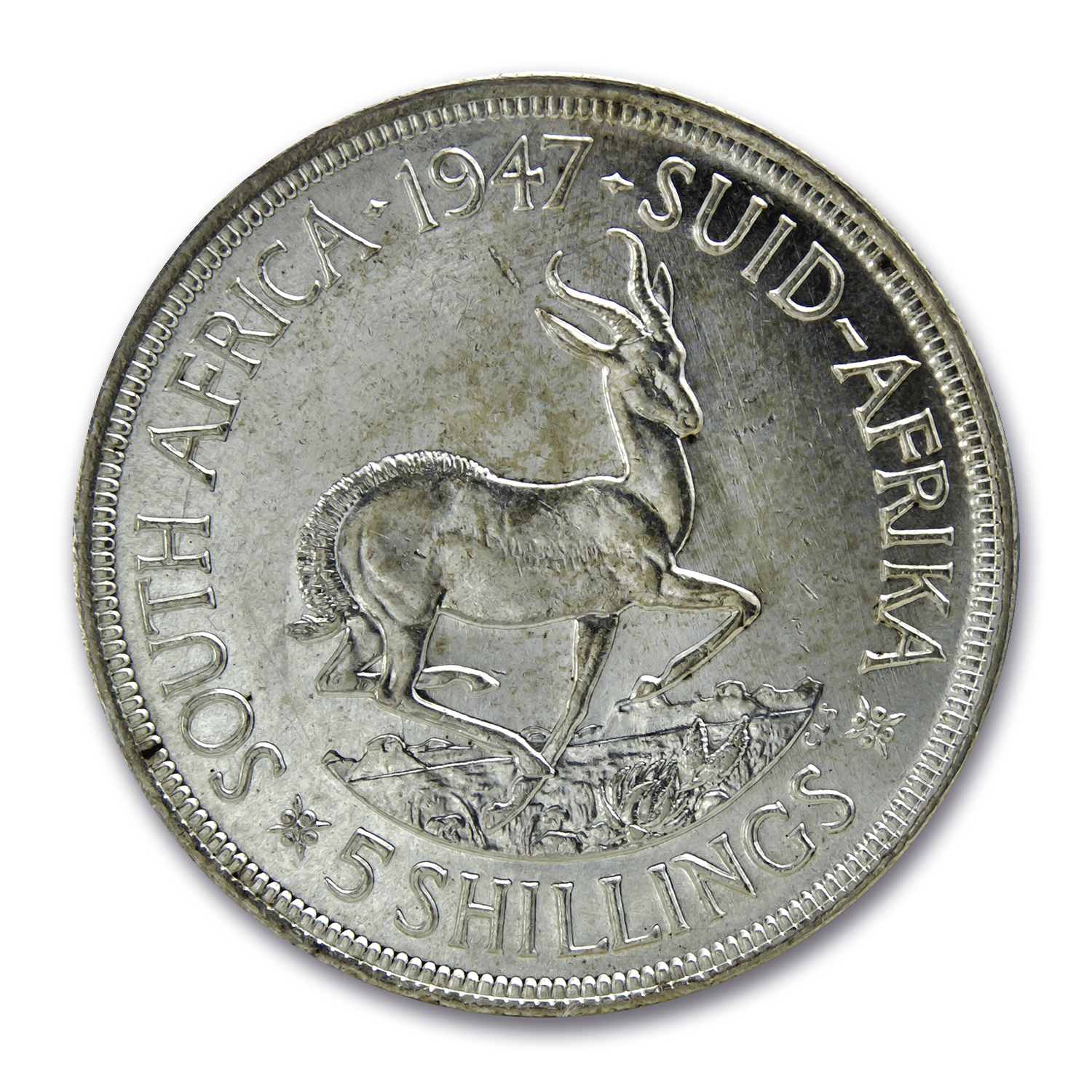 South Africa Silver 5 Shillings King George VI/Springbok BU