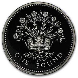 Great Britain £1 Silver Proof - Random Dates