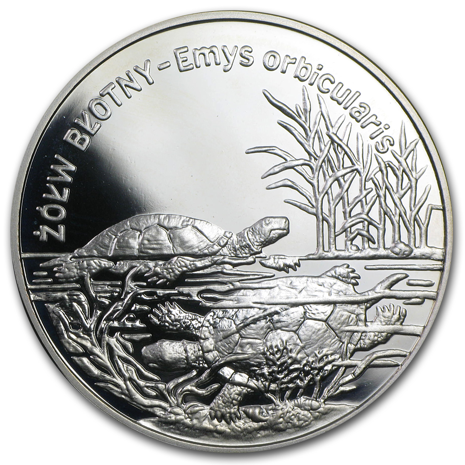 2002 Poland Silver 20 Zlotych Turtles Proof (ASW .841)