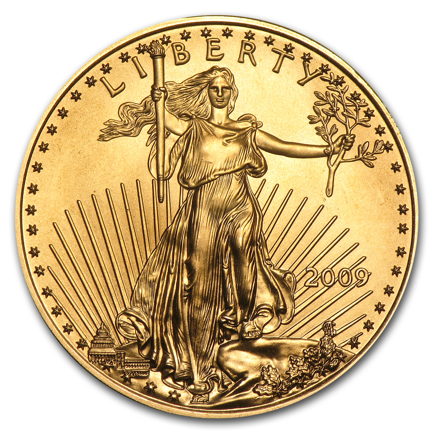 2009 1/2 oz Gold American Eagle BU