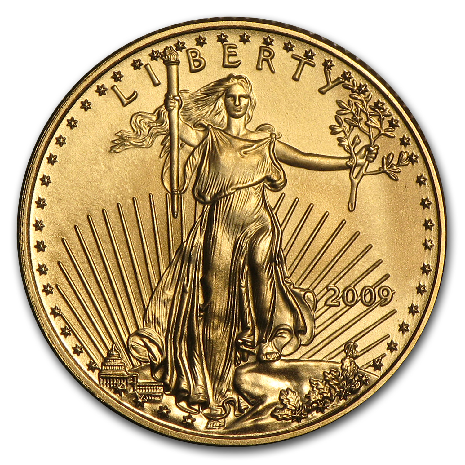 2009 1/10 oz Gold American Eagle BU