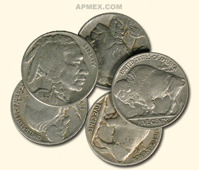 1913-1938 Buffalo Nickels (10 Different Dates &/or Mint Marks)
