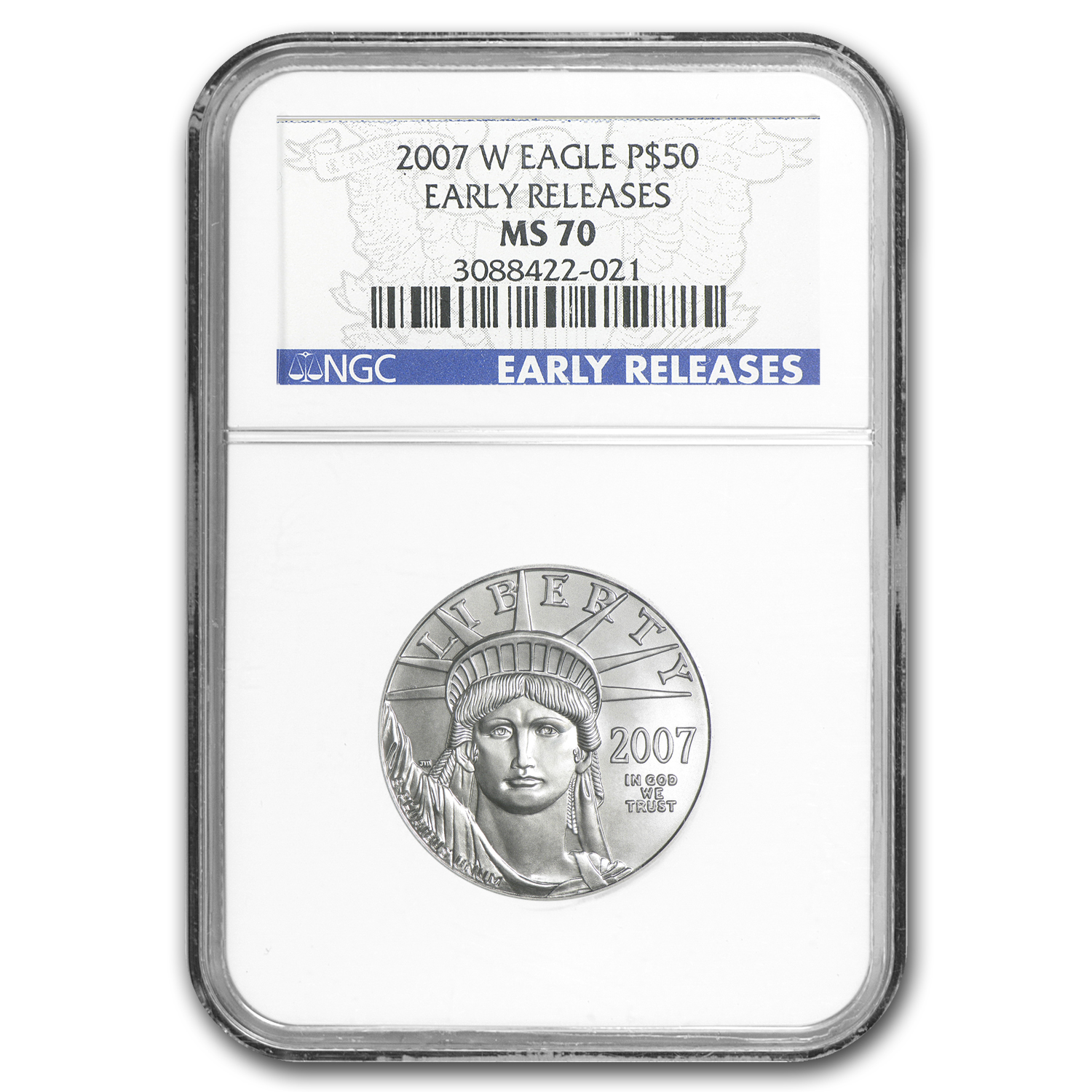2007-W 1/2 oz Burnished Platinum American Eagle MS-70 NGC (ER)