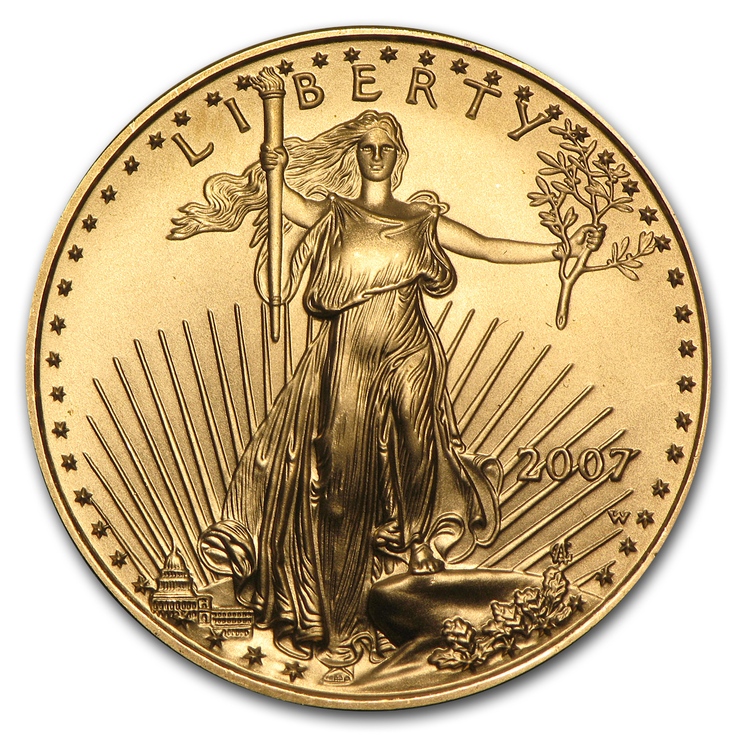 2007-W 1/2 oz Burnished Gold American Eagle
