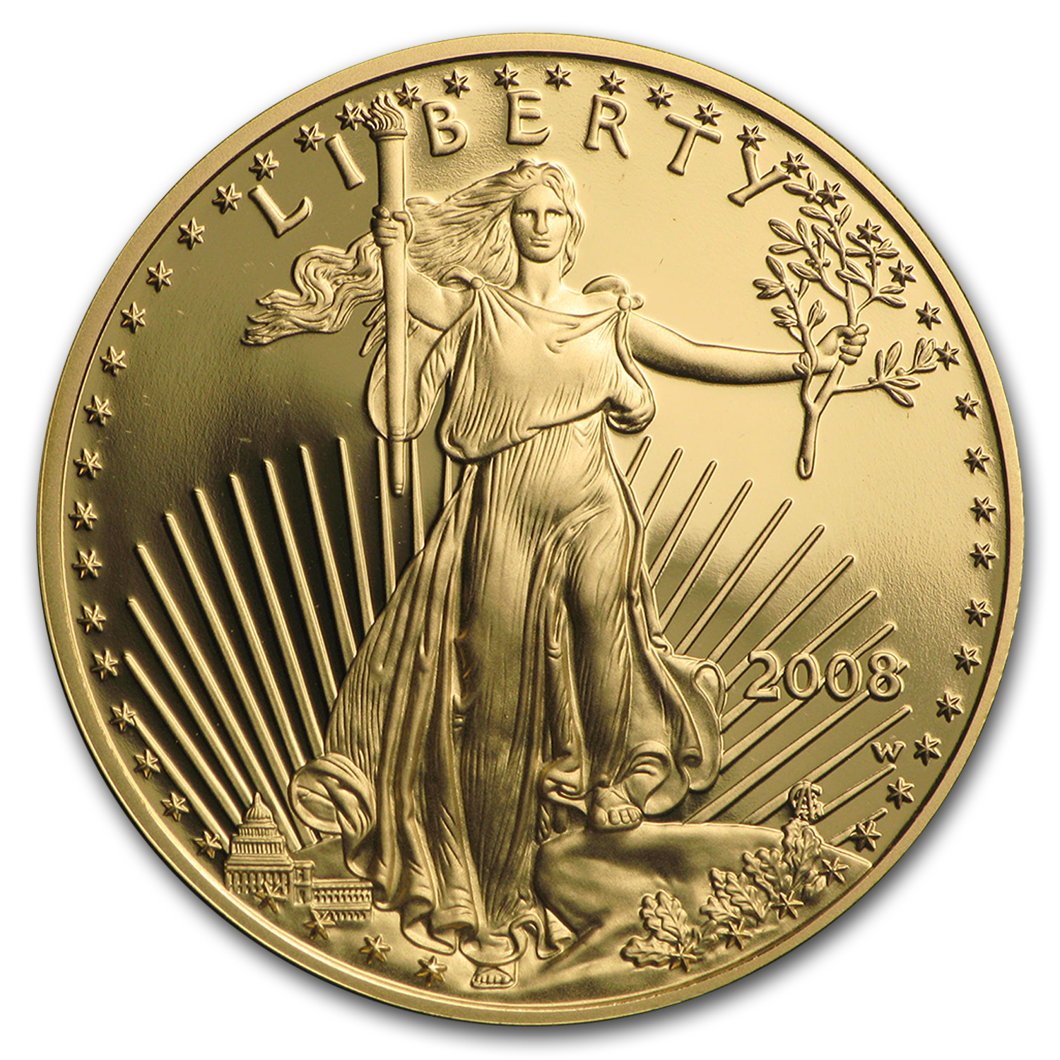 2008-W 1/2 oz Proof Gold American Eagle (w/Box & CoA)