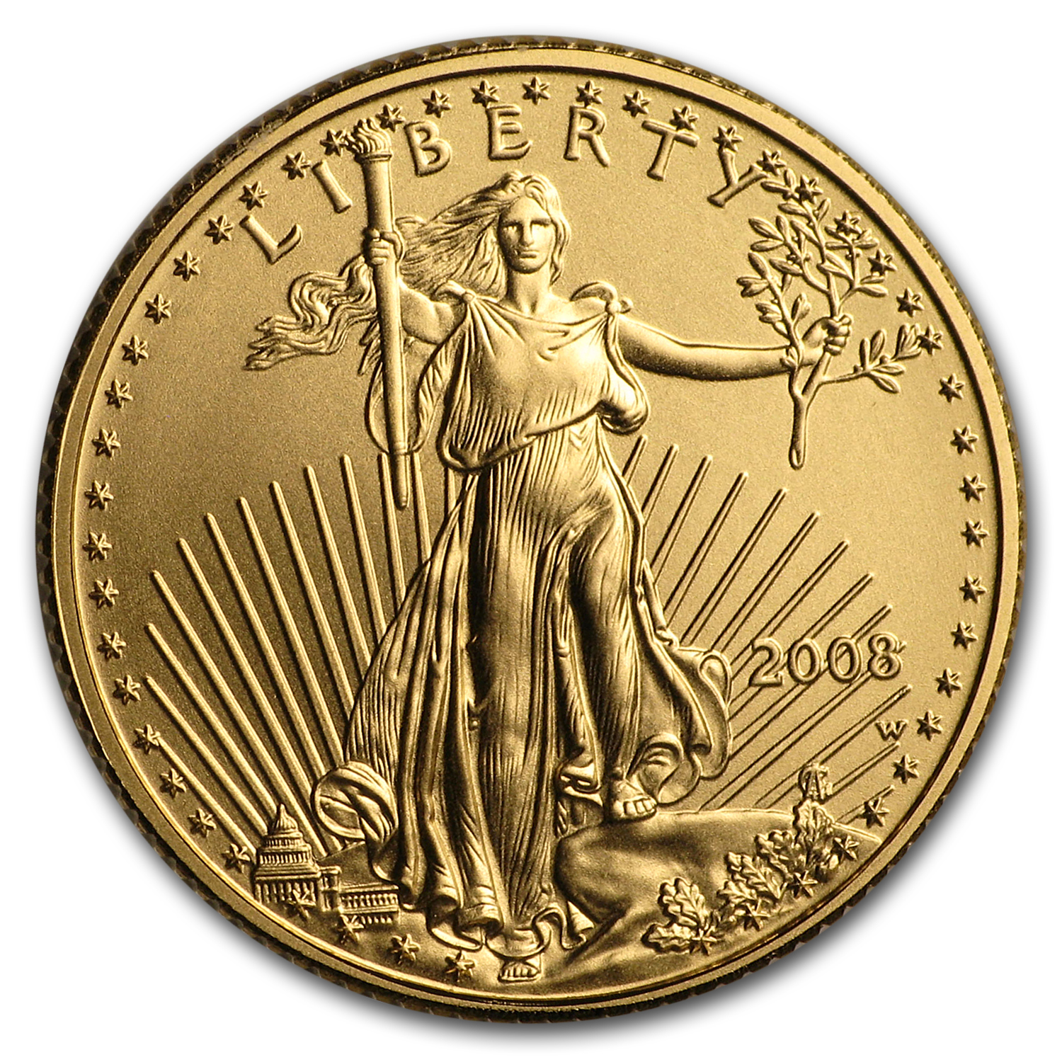 2008-W 1/10 oz Burnished Gold American Eagle (w/Box & COA)
