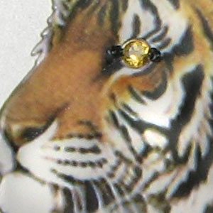2010 Year of the Tiger Gemstone Eye - 1 Kilo Silver Coin (SII)