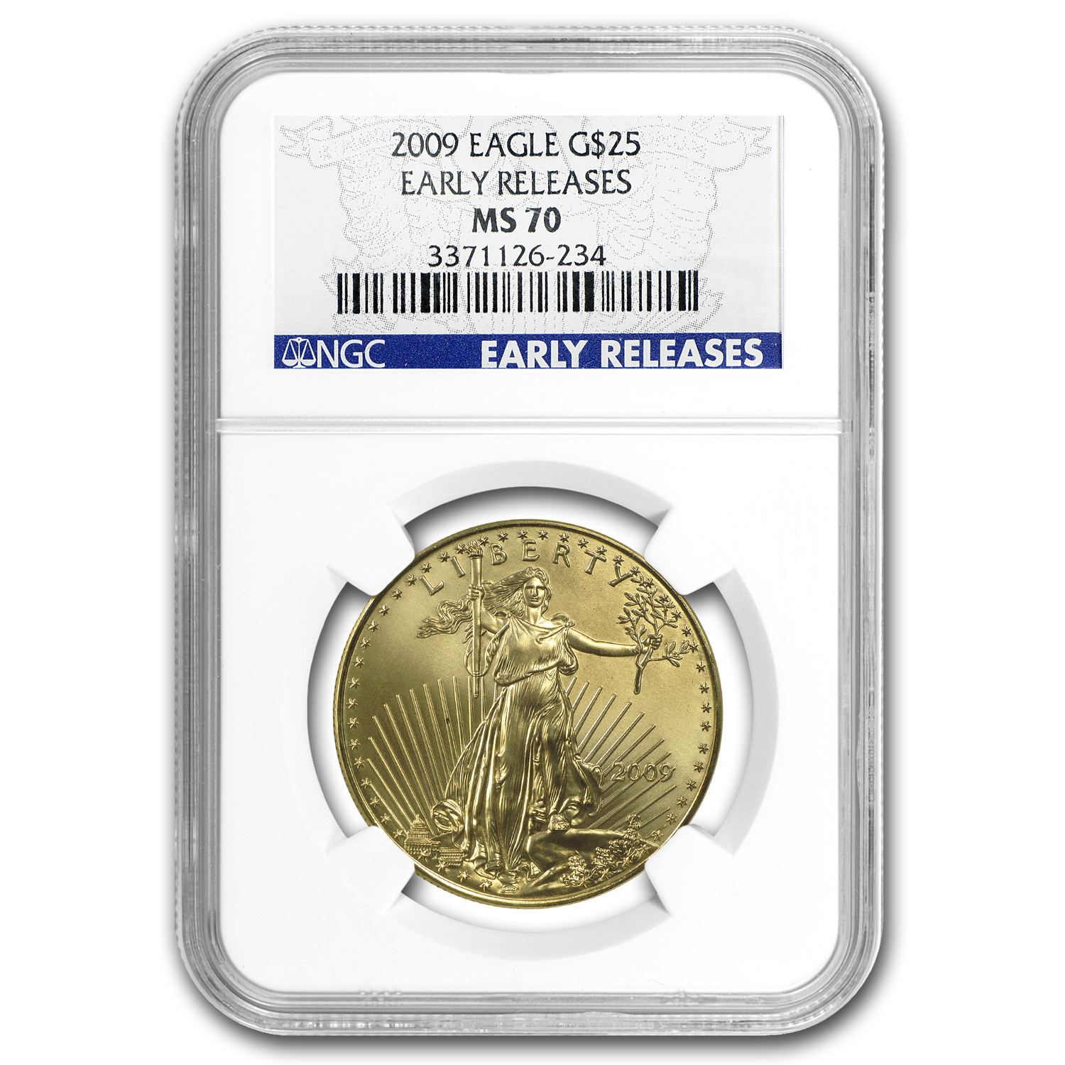 2009 4-Coin Gold American Eagle Set MS-70 NGC (ER)