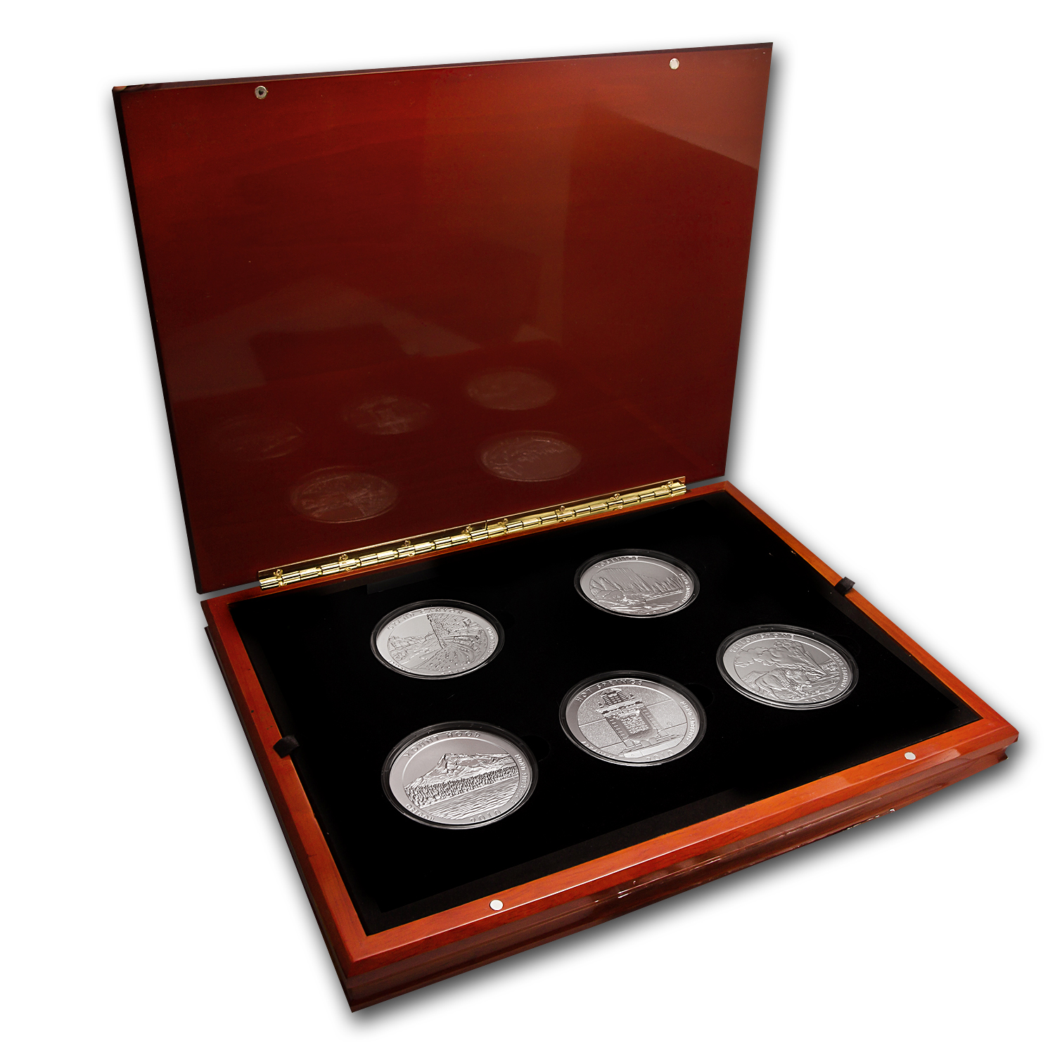 2010-P 5-Coin 5 oz Silver ATB Specimen Set (Elegant Display Box)