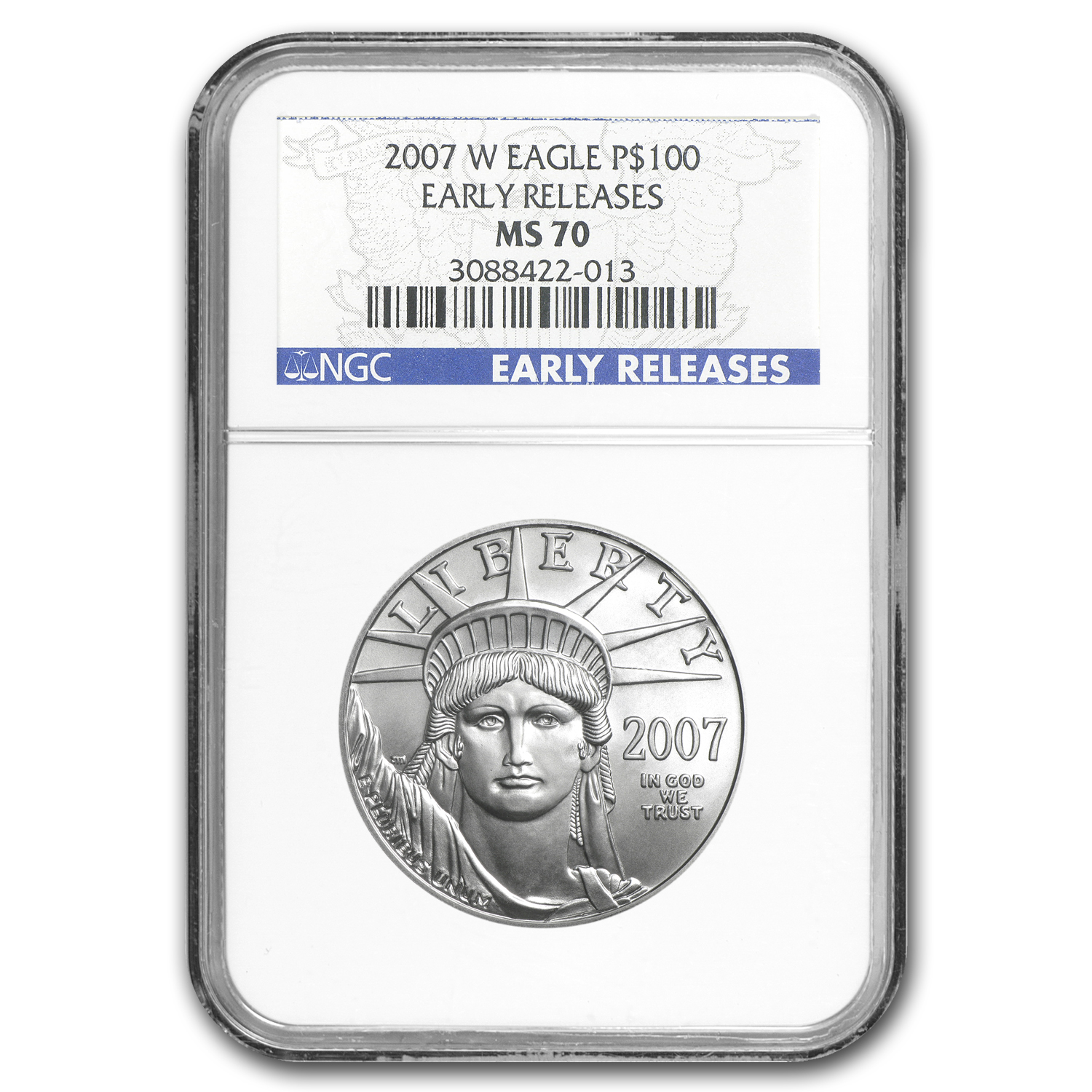 2007-W 1 oz Burnished Platinum American Eagle MS-70 NGC (ER)