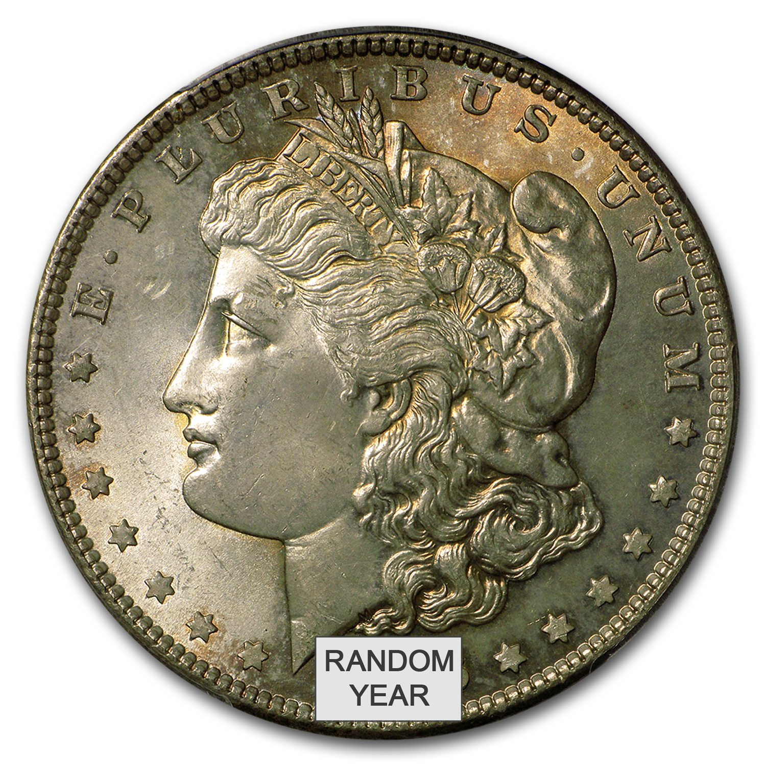1878-1904 Morgan Dollars - MS-65 PCGS - Toned Obverse/Reverse