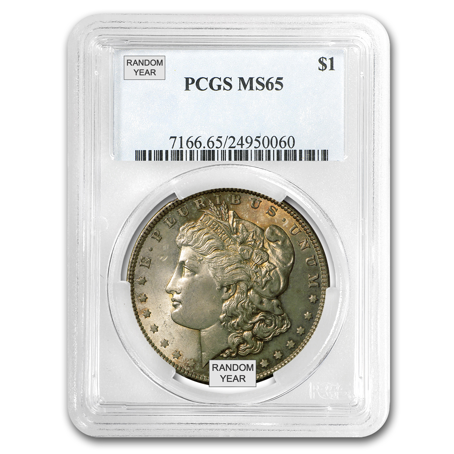 1878-1904 Morgan Dollars MS-65 PCGS (Toned Obverse/Reverse)