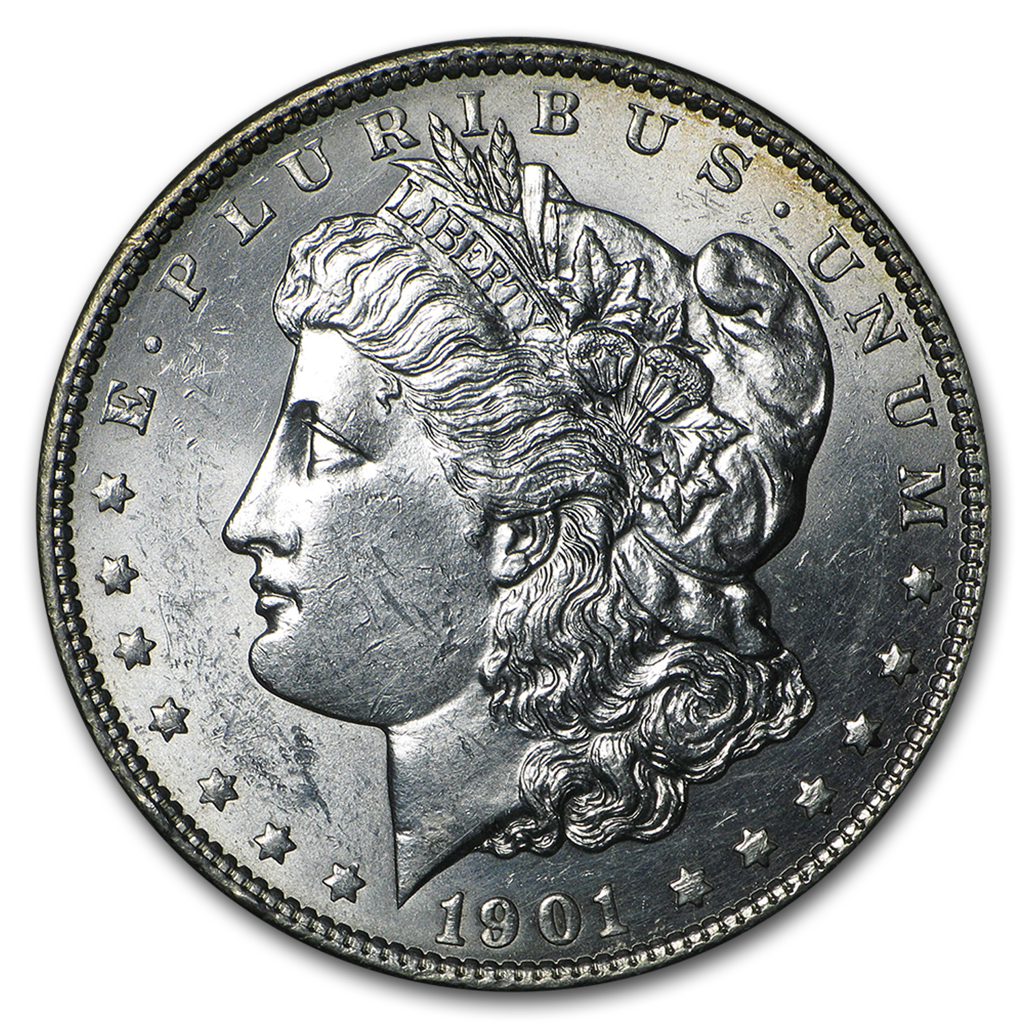 1901 Morgan Dollar - Brilliant Uncirculated