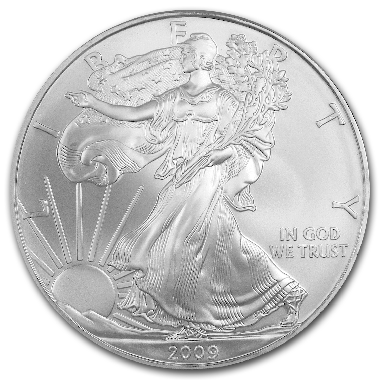 2009 1 oz Silver American Eagles (20-Coin MintDirect® Tube)