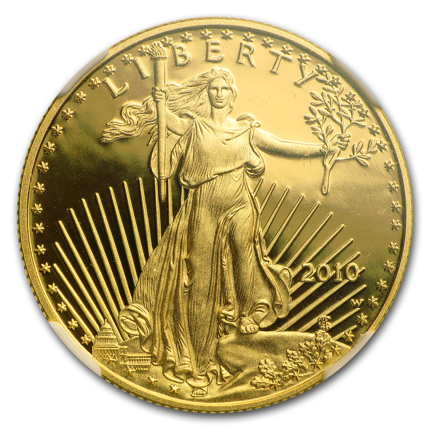 2010-W 1/2 oz Proof Gold American Eagle PF-70 NGC (ER)