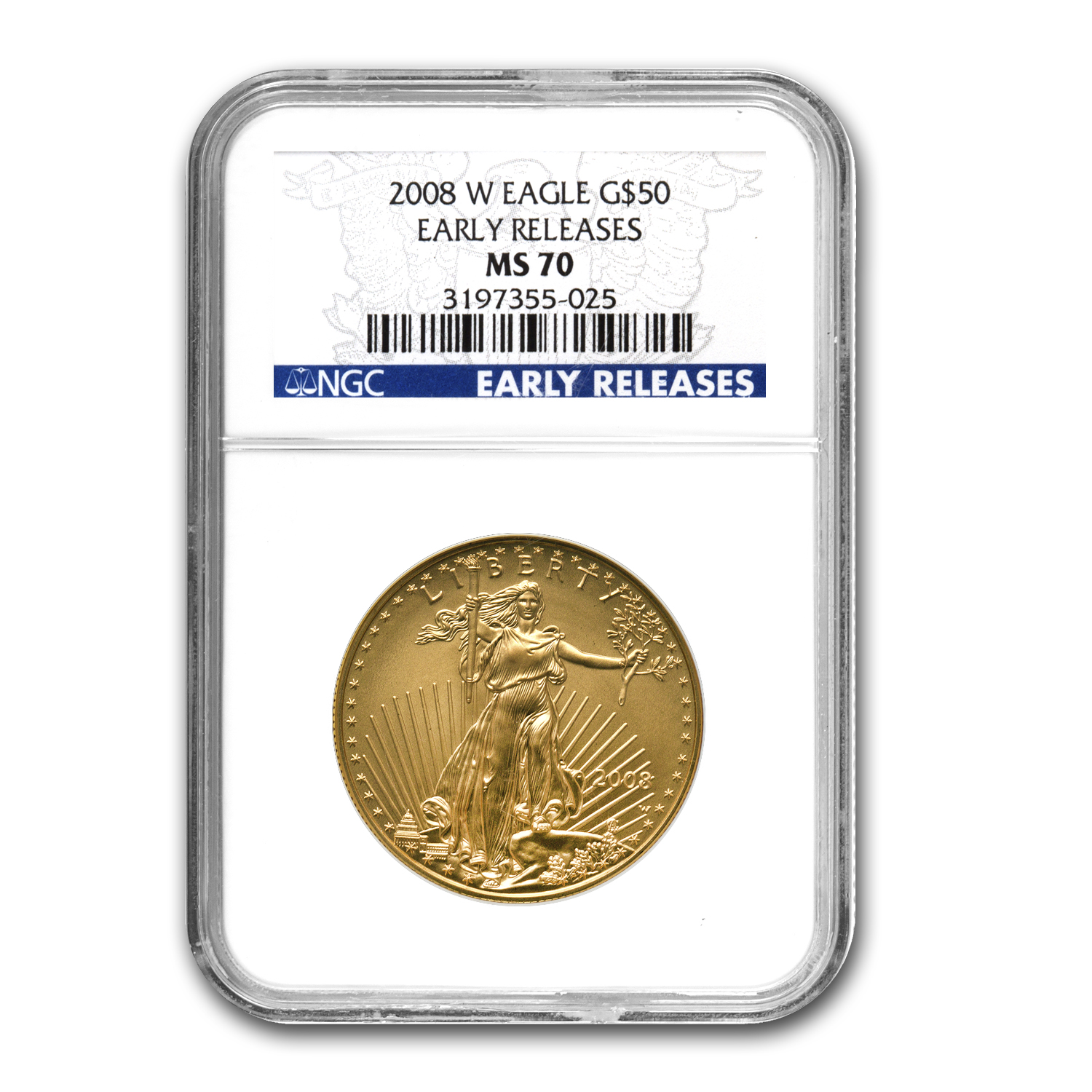 2008-W 1 oz Burnished Gold American Eagle MS-70 NGC (ER)