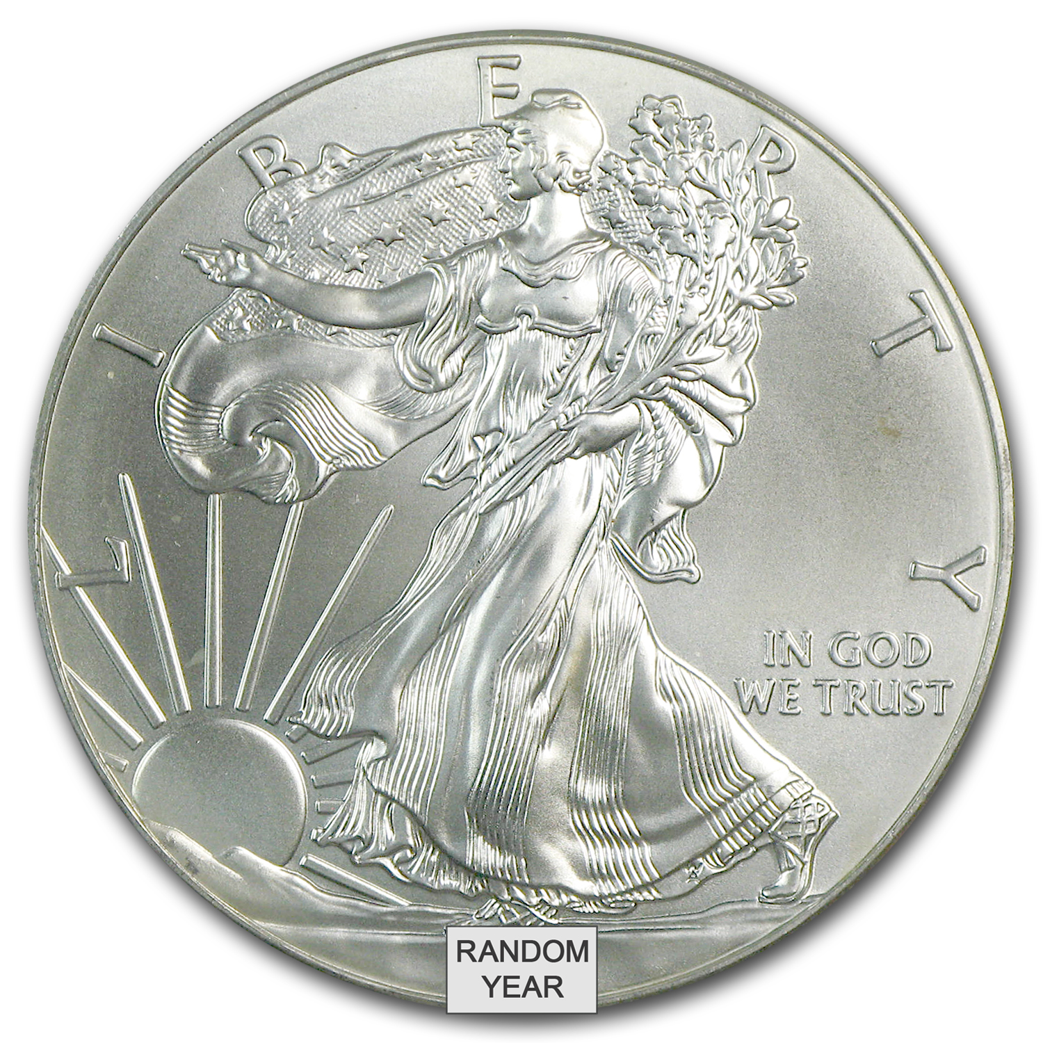 1 oz Silver American Eagle (Cull, Damaged, etc.)