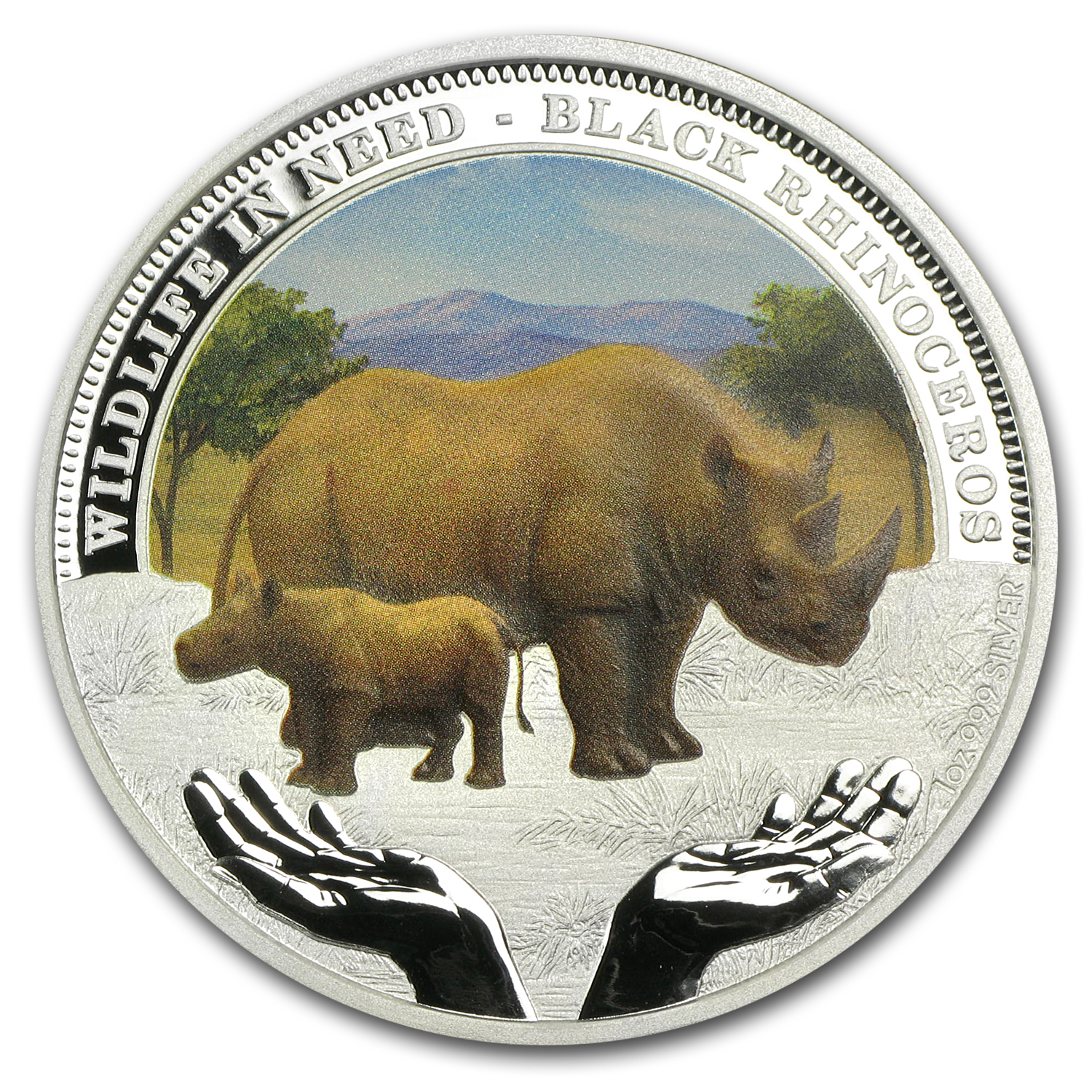 2012 1 oz Proof Silver Black Rhinoceros - Wildlife in Need Series