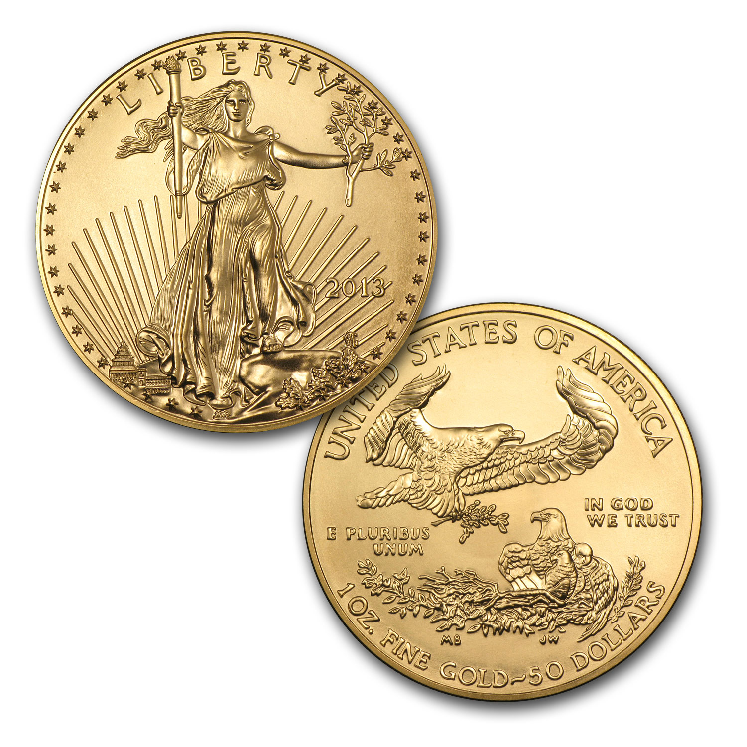 2013 1 oz Gold Eagle (20-Coin MintDirect® Tube) (Premier)