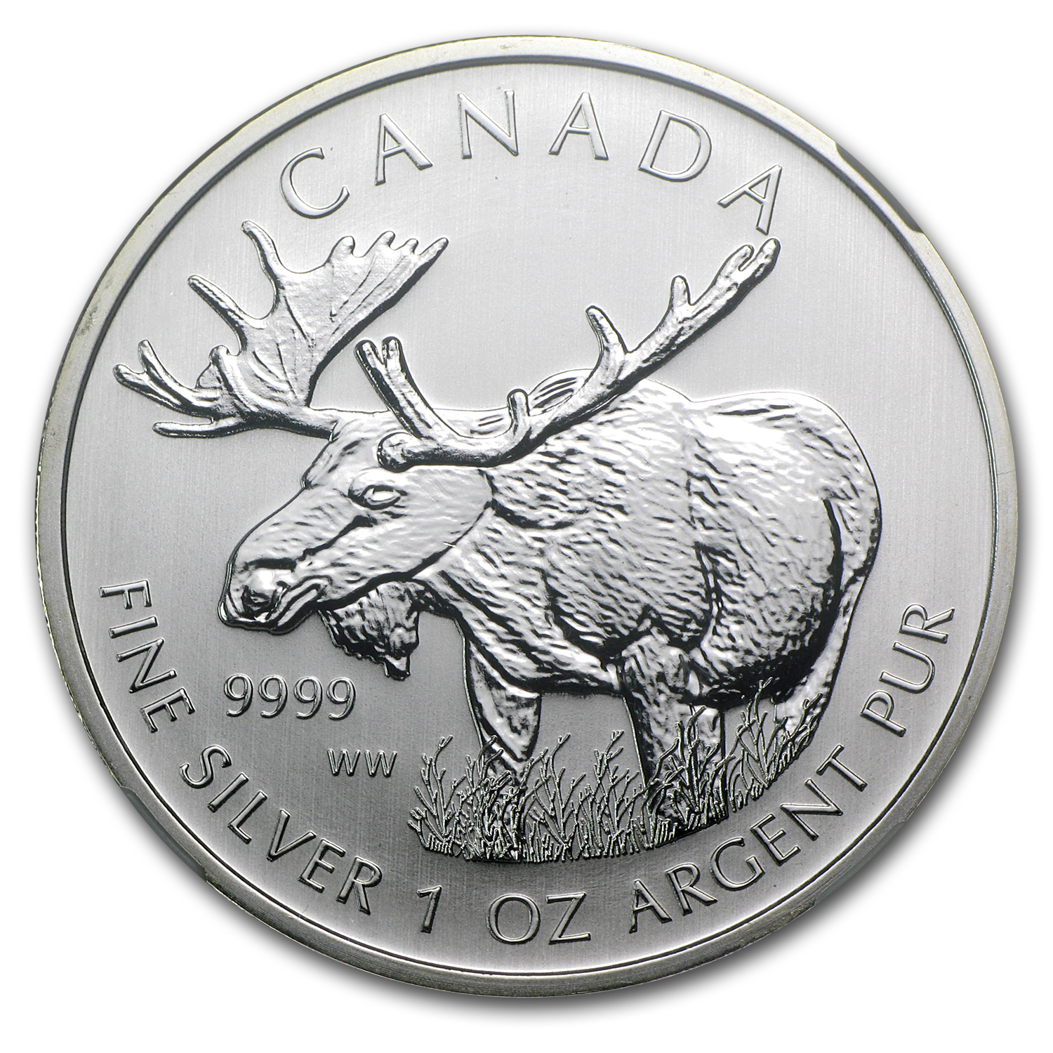 2012 1 oz Silver Canadian Wildlife Series - Moose MS-69 NGC