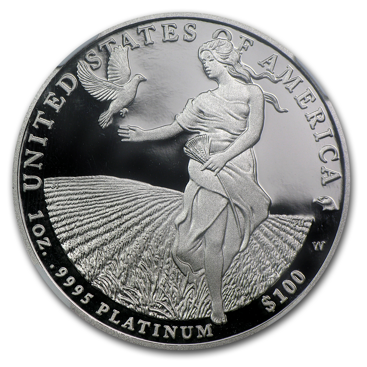 2011-W 1 oz Proof Platinum American Eagle NGC PF-70 (ER)