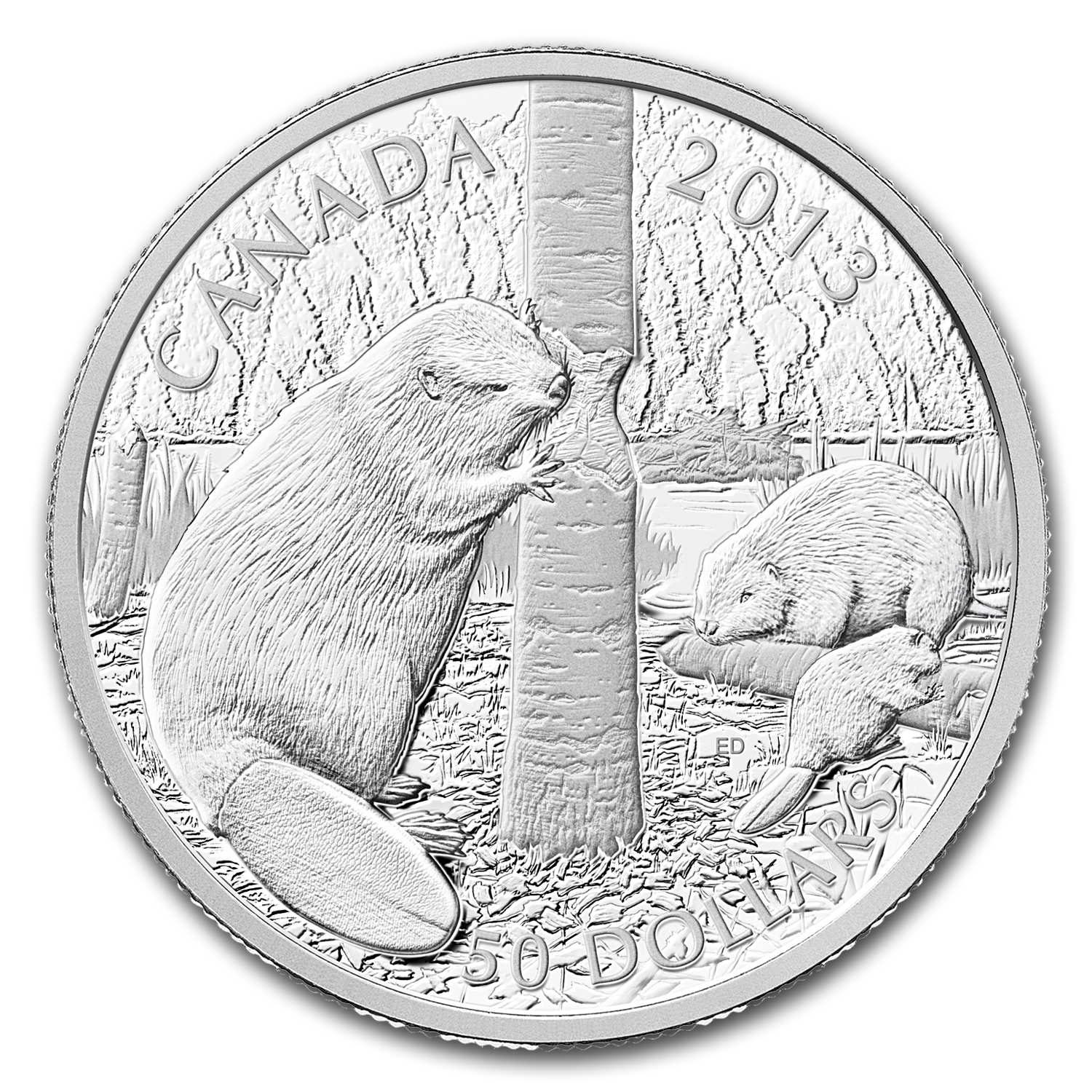 2013 5 oz Silver Canadian $50 The Beaver