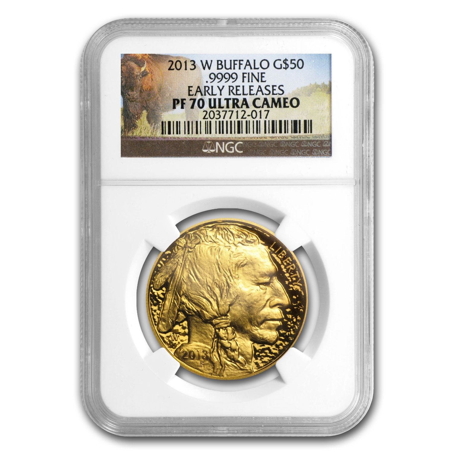 2013-W 1 oz Proof Gold Buffalo PF-70 NGC (ER)