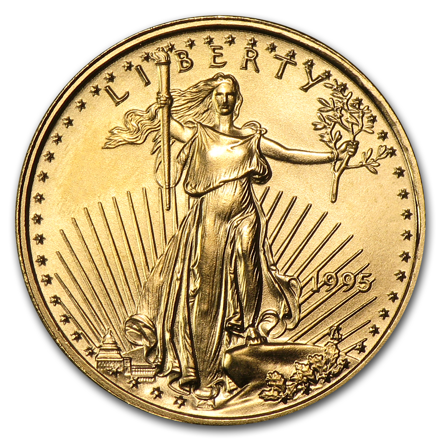 1986-2014 29-Coin 1/10 oz Gold Eagle Set BU (Dansco Album)