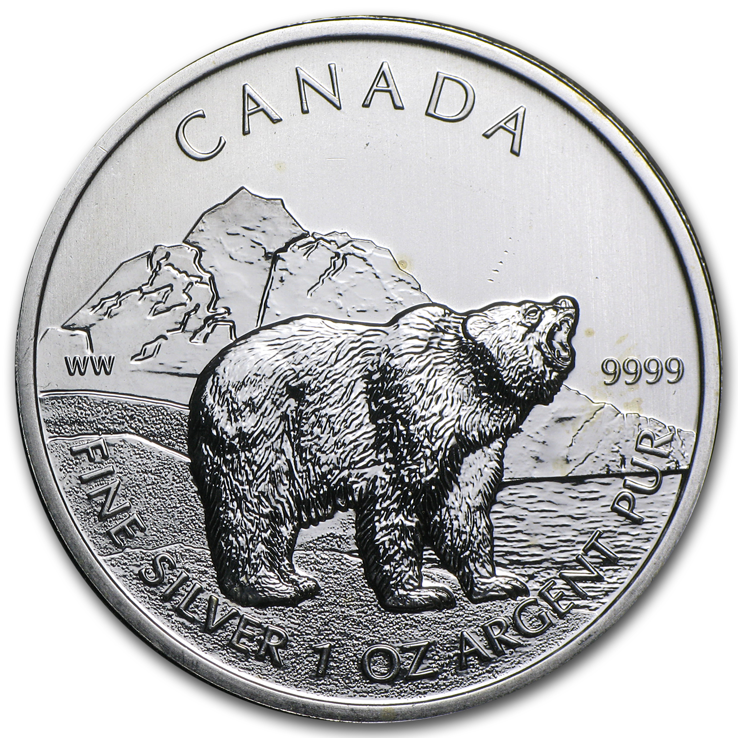 2011 1 oz Silver Canadian Grizzly (Abrasions, Spotted)