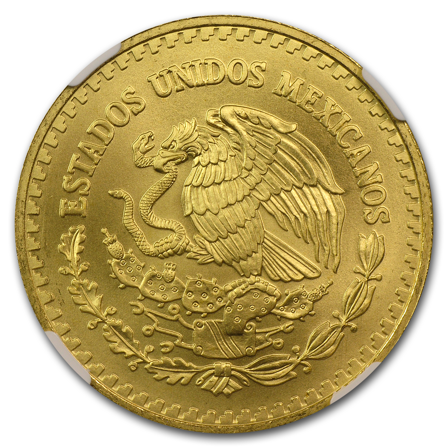 1993 Mexico 1 oz Gold Libertad MS-69 NGC