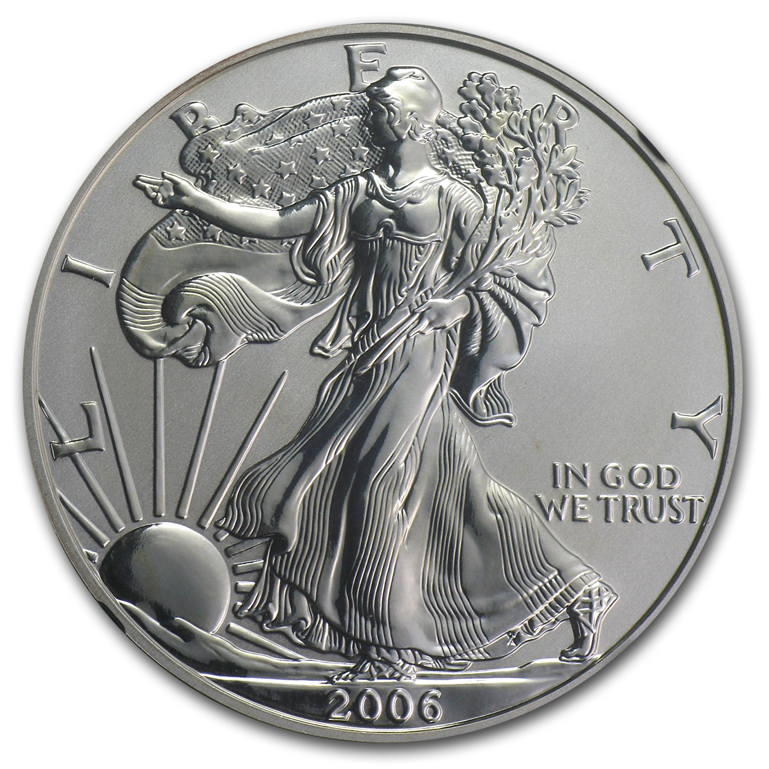 2006-P 1 oz Reverse Proof Silver Eagle (Capsule Only)