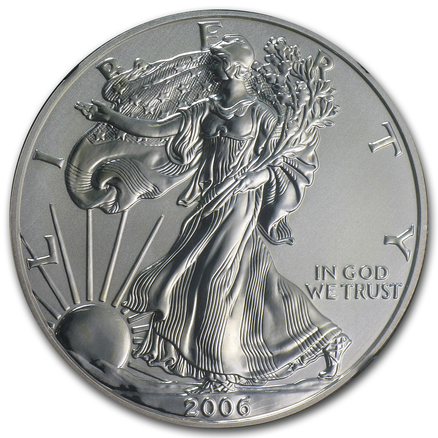 2006-P Reverse Proof Silver Eagle PF-69 NGC (Black Core)