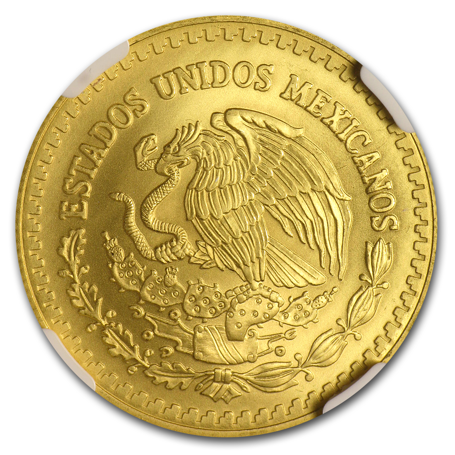 2007 Mexico 1/2 oz Gold Libertad MS-69 NGC