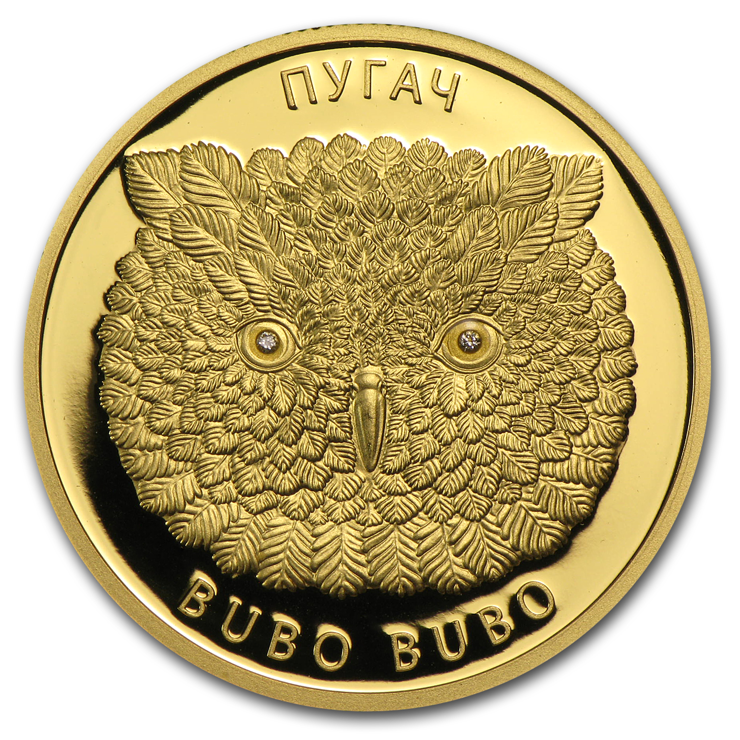 2010 Belarus Gold Eagle Owl Bubo Bubo Proof
