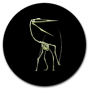 2013 Canadian $0.25 Glow in the Dark Dinosaur (Quetzalcoatlus)