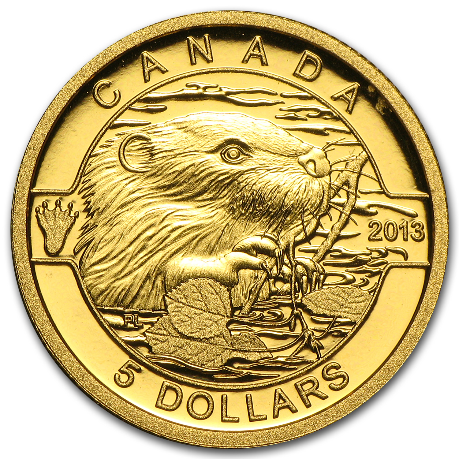 2013 1/10 oz Gold Canadian $5 The Beaver Proof