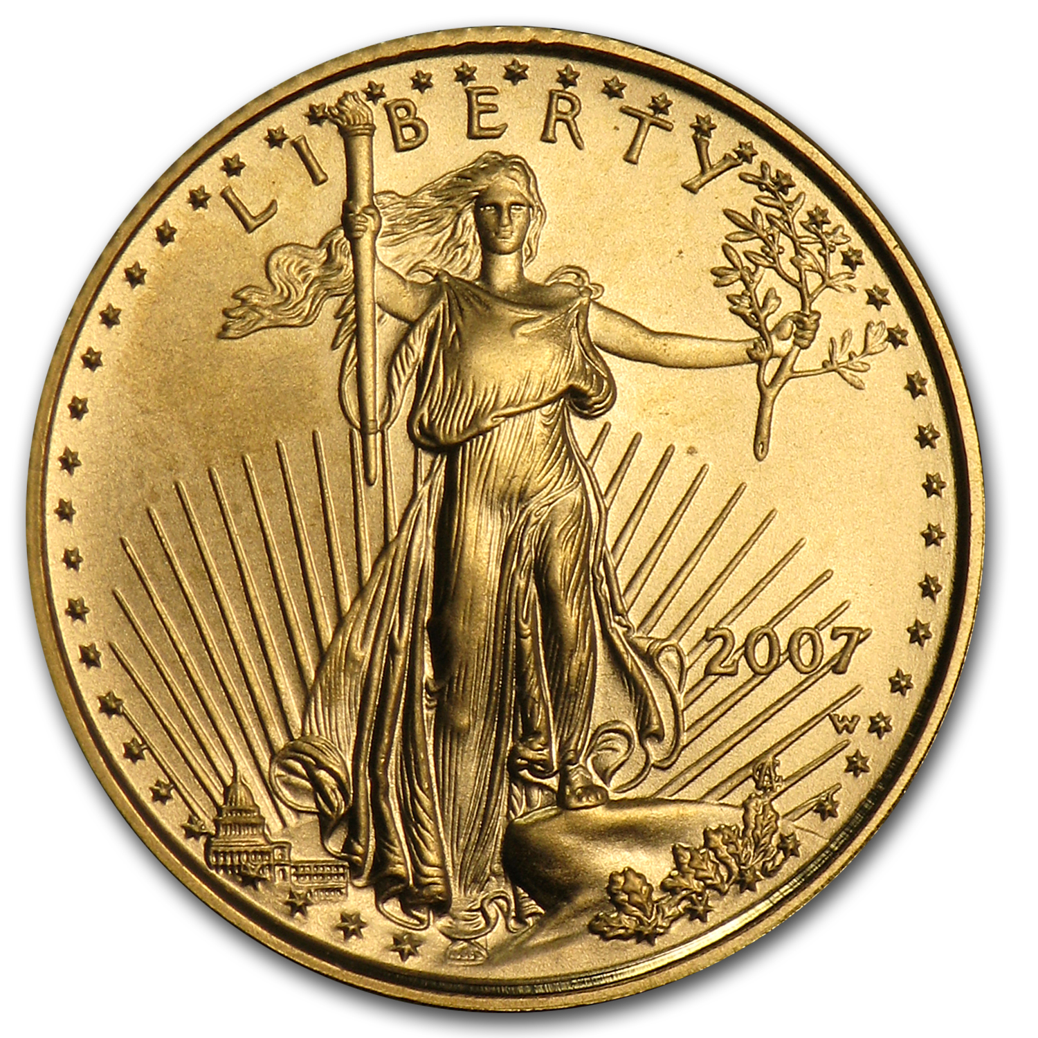 2007-W 1/10 oz Burnished Gold American Eagle