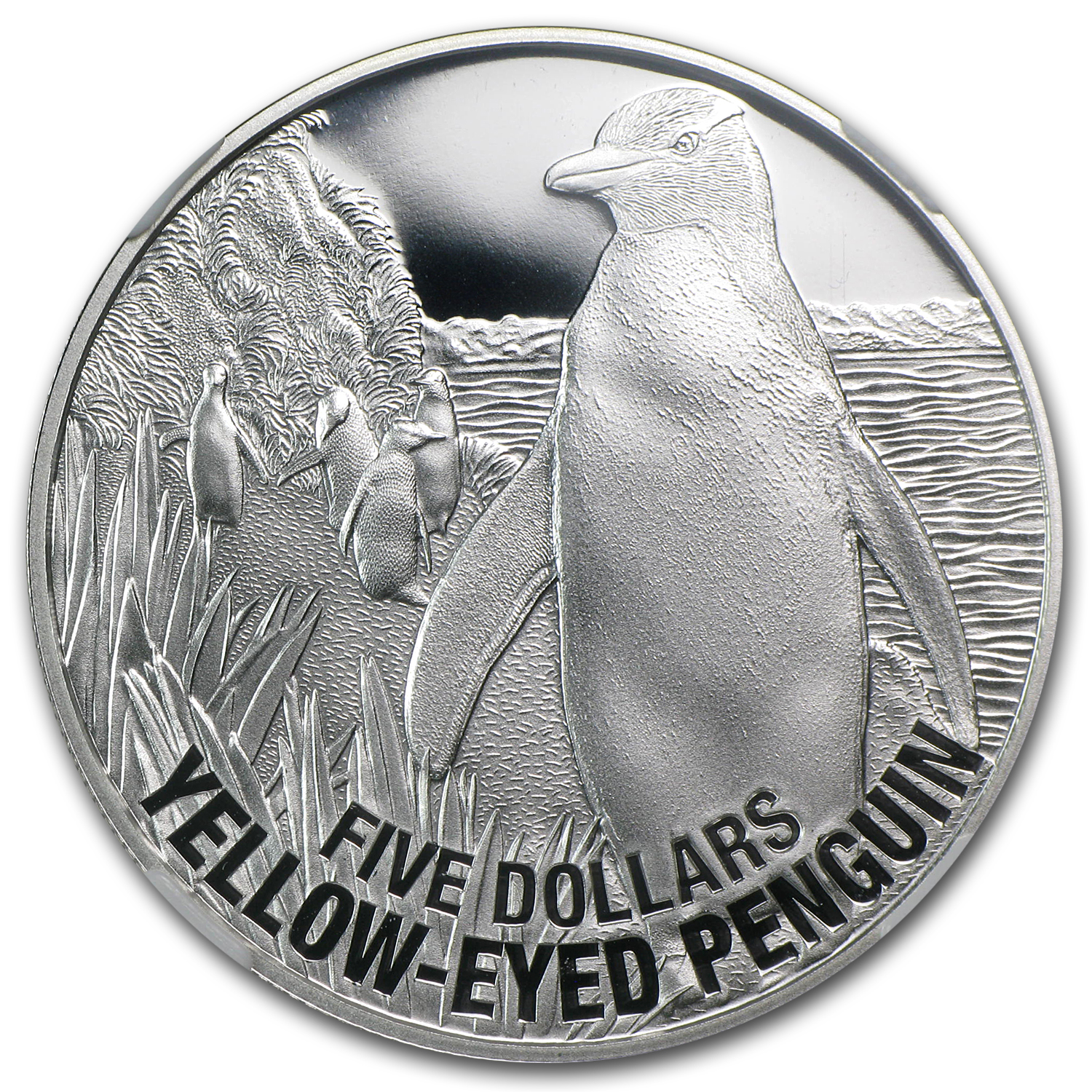 2011 New Zealand 1 oz Silver $5 Yellow Eyed Penguin PF-69 NGC