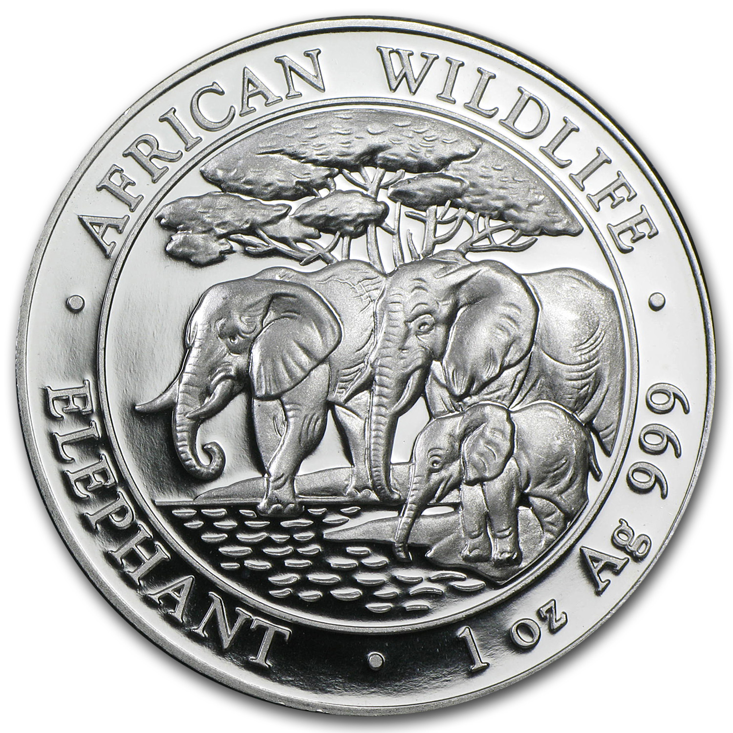 2013 1 oz Silver Somalian Elephant - Brilliant Uncirculated