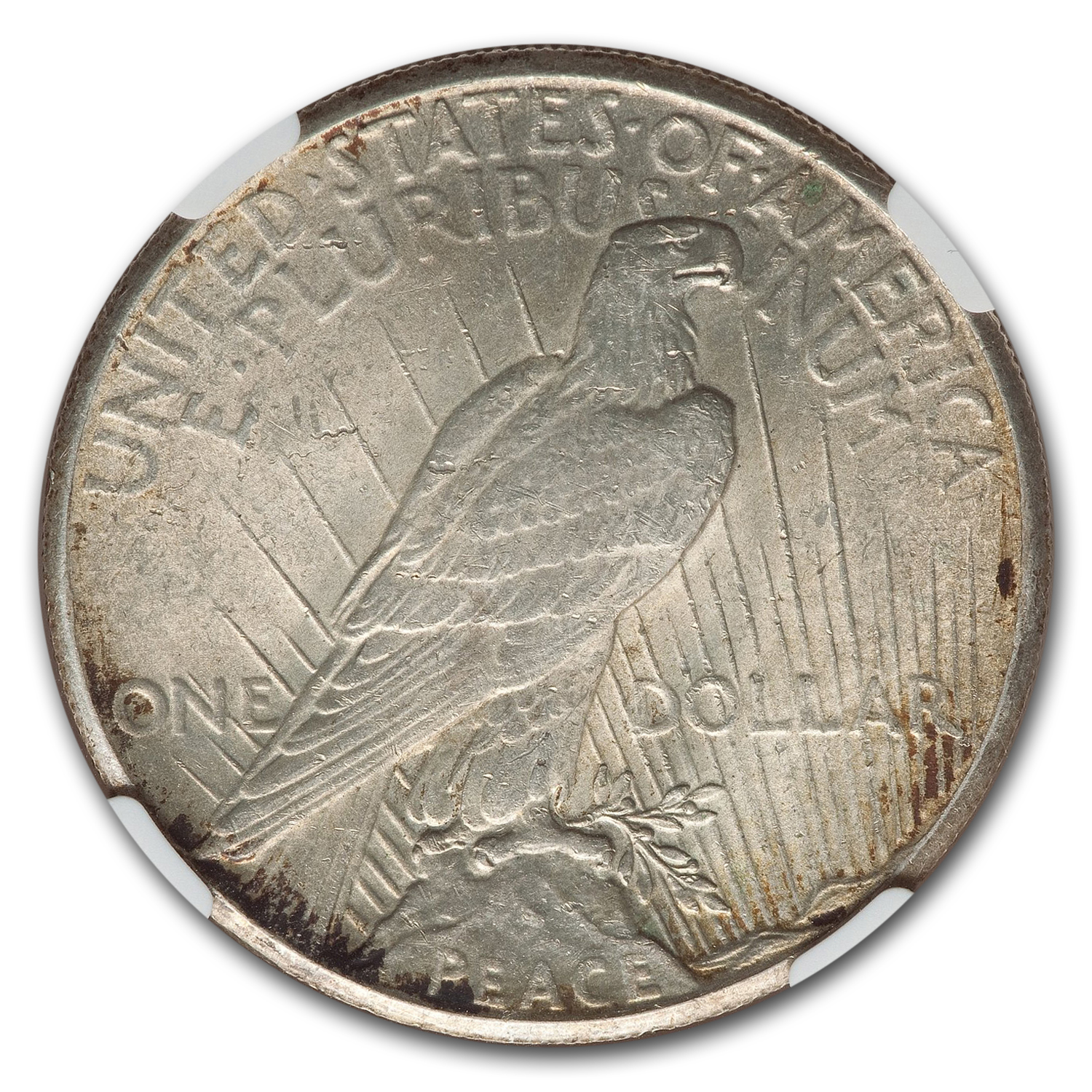 1928 Peace Dollar MS-62 NGC (Key Date)