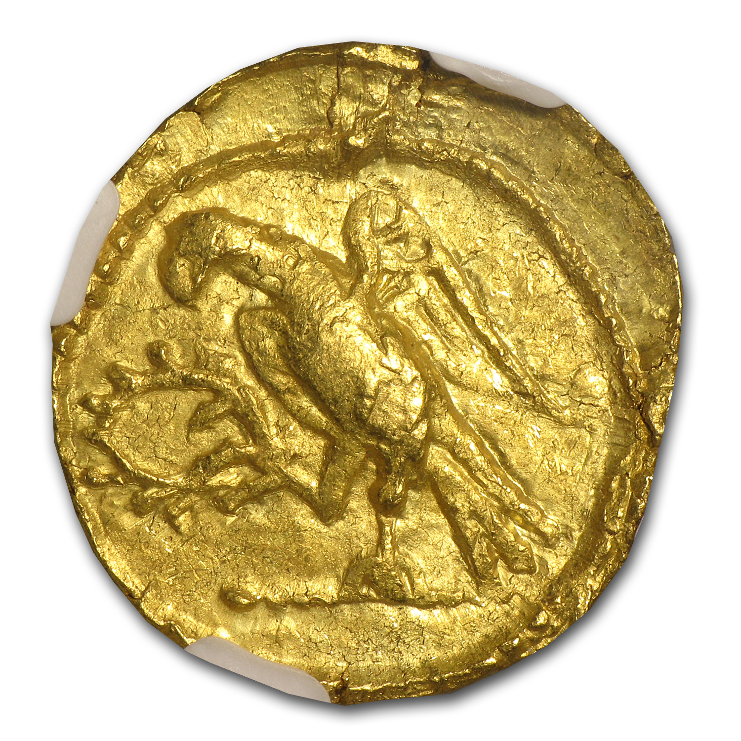 Thracian/Scythian Gold Stater XF NGC (1st Century BC)