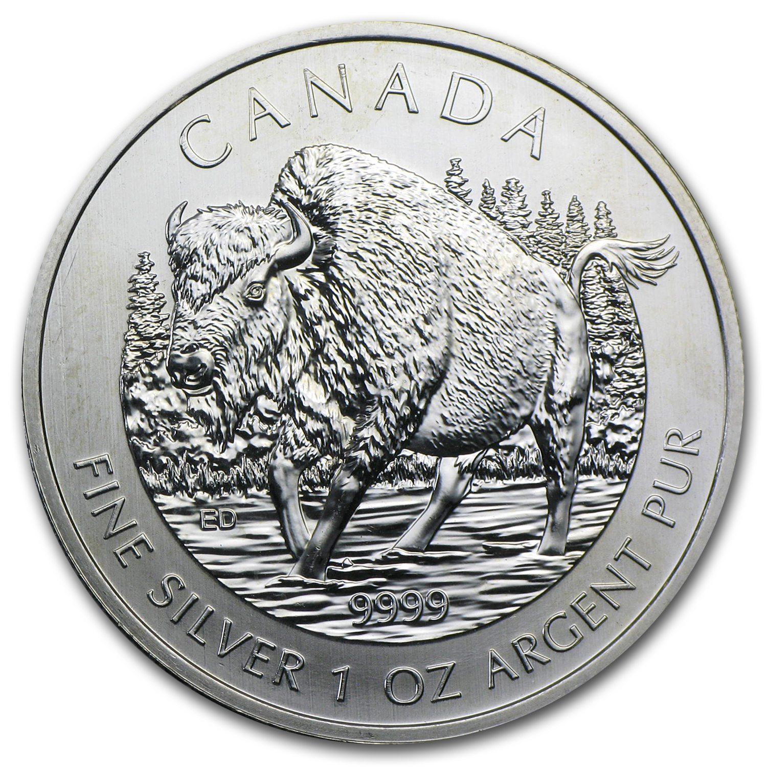 2013 1 oz Silver Canadian Wood Bison Wildlife Series (Impaired)