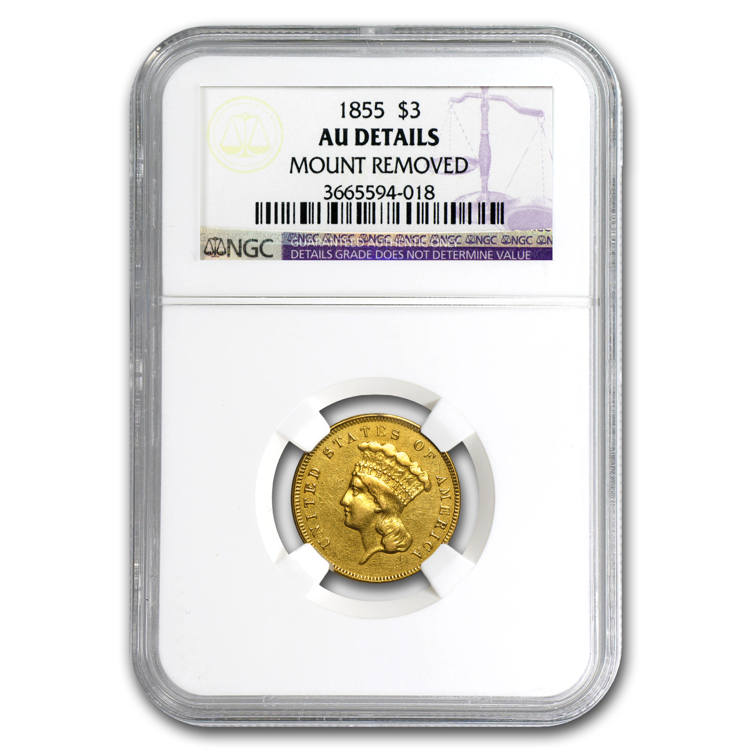 1855 $3 Gold Princess - AU Details - NGC (Mount Removed)