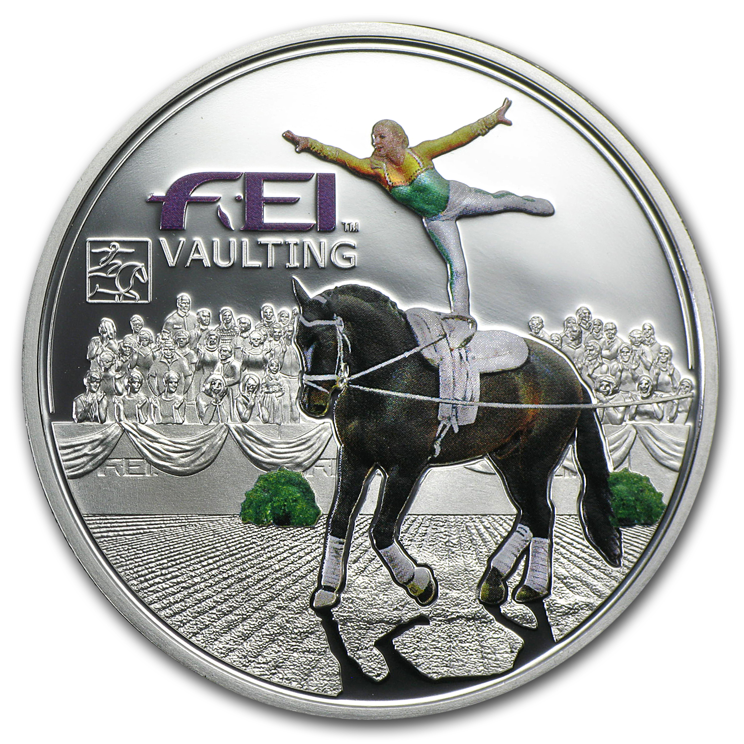 2013 Andorra Silver Fédération Equestre Internationale Vaulting