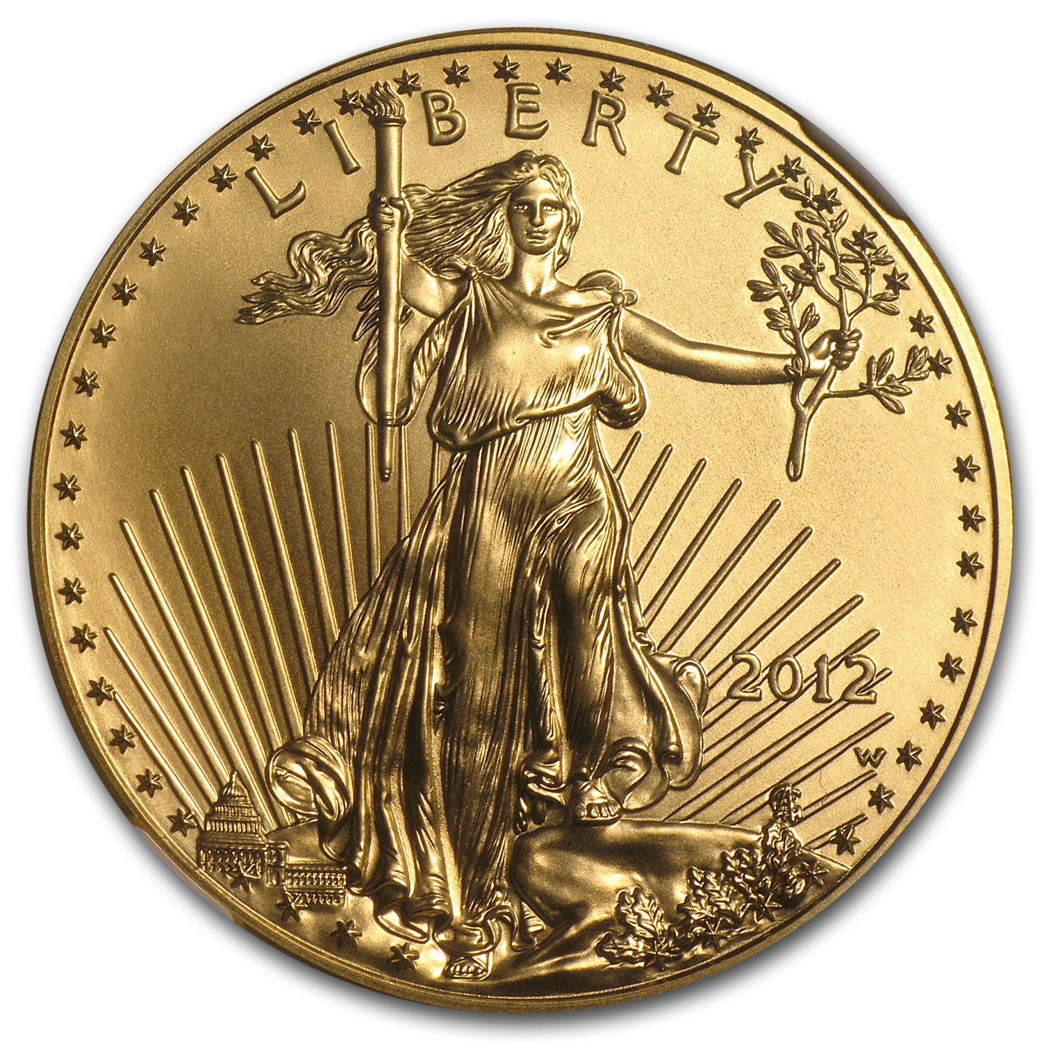 2012-W 1 oz Burnished Gold Eagle MS-70 NGC (ER)