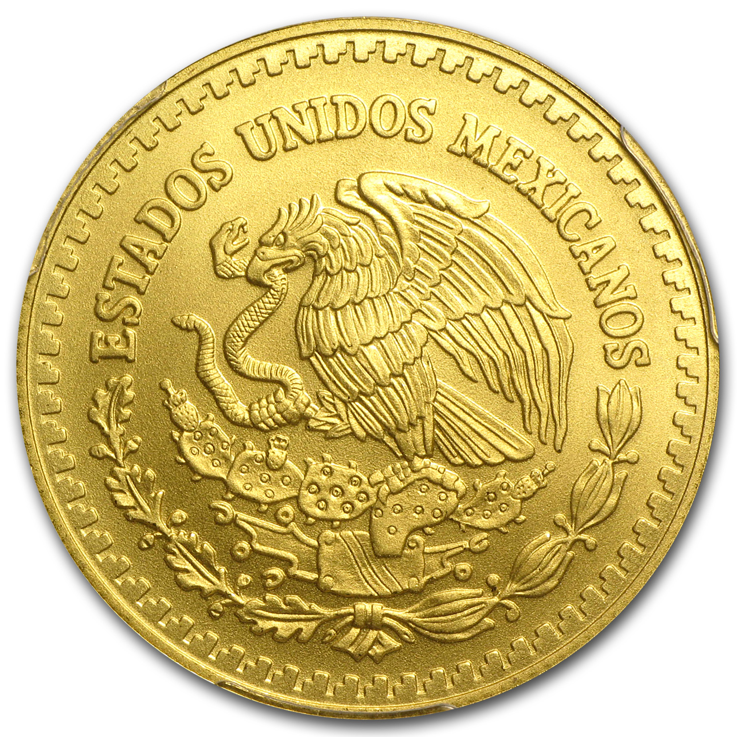 2013 Mexico 1/2 oz Gold Libertad MS-70 PCGS