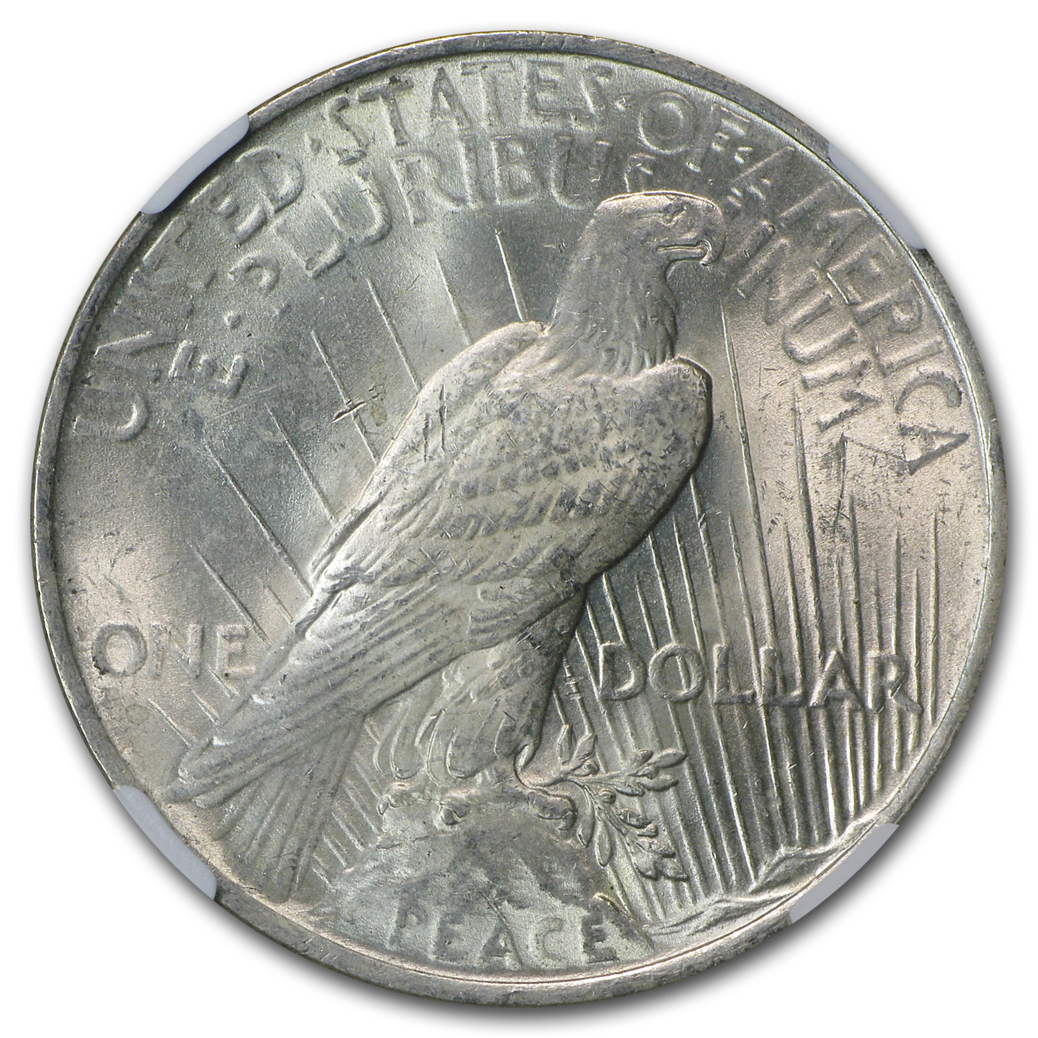 1923 Peace Dollar MS-63 NGC (Obv Struck Thru Error)