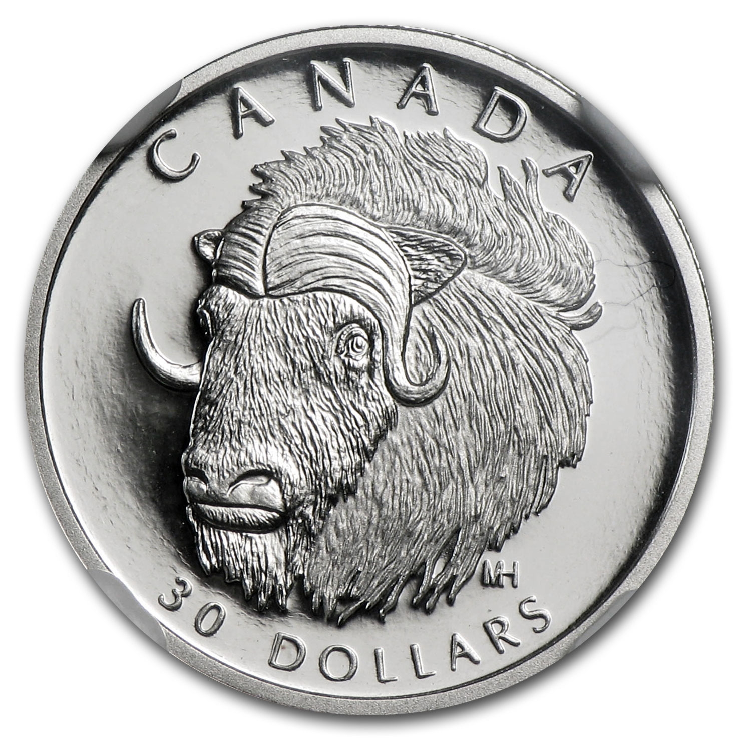 1999 Canada 1/10 oz Proof Platinum Muskoxen PF-70 NGC