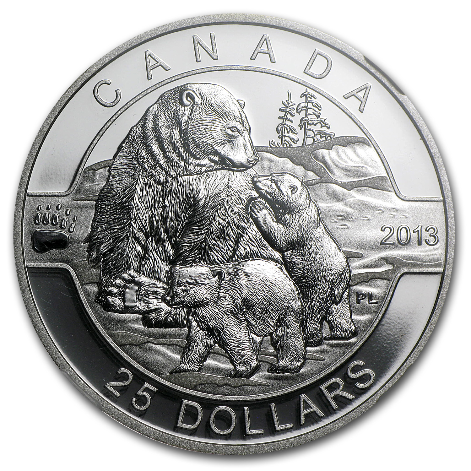 2013 1 oz Silver Canadian $25 The Polar Bear Family PF-70 NGC